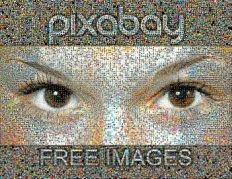 Photo mosaic assembled from Pixabay.com users pictures