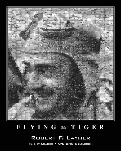 Flying Tiger mosaic by Jim Lammers