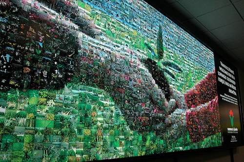 Large vinyl print mosaic (6x2 meters)