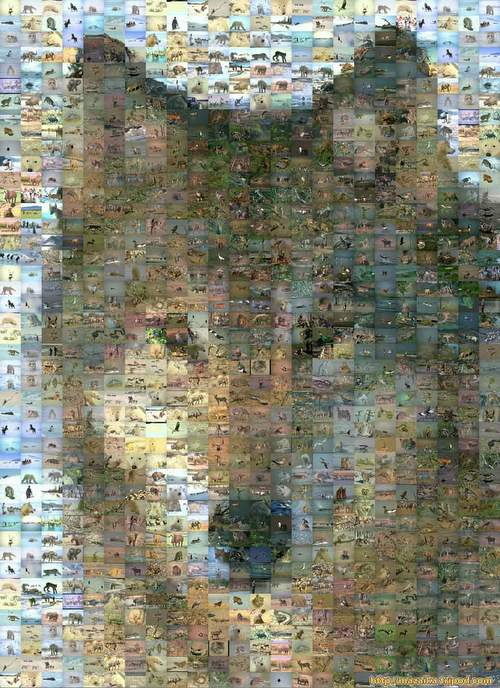 Wolf mosaic(mid size)